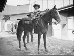 Little cowboy on horse, 22/4/1935 / by Sam Hood (State Library of New South Wales collection) Tags: boy portrait horse cute animal mammal caballo 1 kid cowboy child guerra criança cowboyhat cavalo saddle horsebackriding stables equus 1935 lasso mondiale stirrups statelibraryofnewsouthwales kidswithanimals samhood royaleastershow1935 sydneyshowgroundnsw royaleastershows