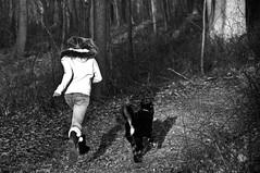 Run (nosha) Tags: winter dog chien newjersey nikon january nj run hike mercer trail 2009 mercercounty lightroom d300 baldpate nosha f53 112mm nikond300 january2009