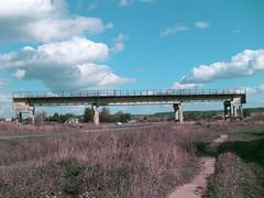 橋さん (Romer Nakata) Tags: road houses car remnants niz tanka 短歌