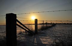 Simplicity (jsrice00) Tags: winter nikon simplicity d300 solace 18200mmf3556gvr nikond300