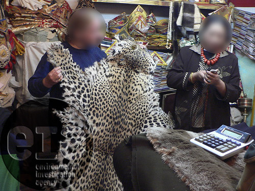 Leopard skin for sale
