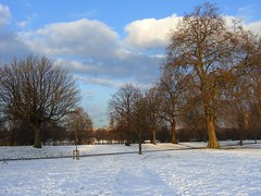 Green Park turned White