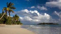 plage prs des salines- Martinique (penelope64) Tags: sea mer france beach island martinique sable crpuscule plage tourisme antilles cocotier le