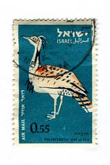 Israel Postage Stamp: Chlamydotis (karen horton) Tags: birds illustration vintage typography graphicdesign israel mail air negev hebrew philatelic karoly postagestamps photogravure chlamydotisundulata huburabustard