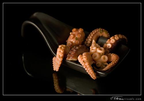 titanvis_7657_octopus