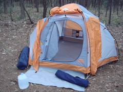 Home Sweet Home (austin root ball) Tags: letterboxing campsite missiontejasstatepark weches tale6