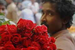 roses | Kolkata (arnabchat) Tags: street morning red roses india flower face look rose eyes dof market streetphotography kolkata bengal seller calcutta bangla oof westbengal canon400d mullickghatflowermarket