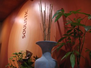 Experience the Oasis at Soulistic Studio & Spa