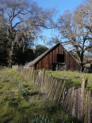 Mihelcic Barn MM30 (judi berdis) Tags: barn nca willits aplusphoto mendocinoco