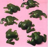 vege frog
