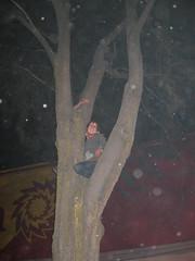 IMG_0208 (tornadogrrrl) Tags: xela treeclimbing quetzaltenango guatemalaguatemala