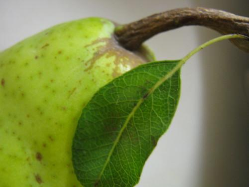 pear w leaf!