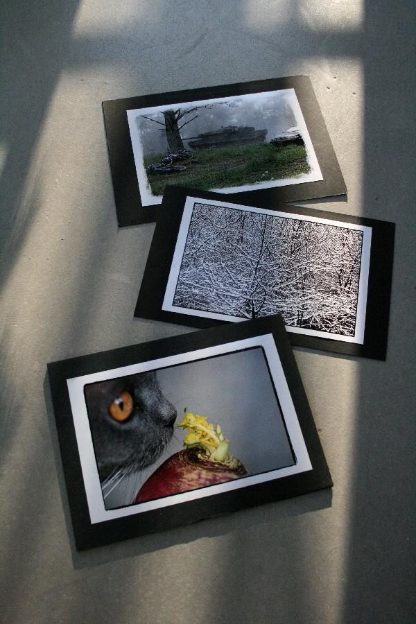 Utställningsbilder