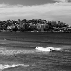 Bondi Beach #2 (Cisco photostream) Tags: ocean sea blackandwhite bw beach monochrome bondi surf mare waves pacific au sydney wave australia filter filters polarizer spiaggia pacifico biancoenero oceano onde onda filtro polarizing monocromatico polarizzatore filtri nikkor50mmf14g