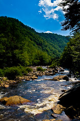 canyon bottom (shane holsclaw) Tags: wv westvirginia blackwater canaanvalley blackwatercanyon canaanvalleywv
