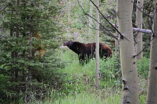 Colorado 2007 093