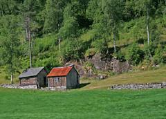 Flam Norway (Roxiepix) Tags: norway barn fjord flam
