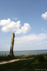 Stump & Clouds ( kerstin-horn.de) Tags: beach clouds landscape waves wolken balticsea landschaft ostsee wellen