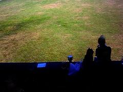 芝生ランチ