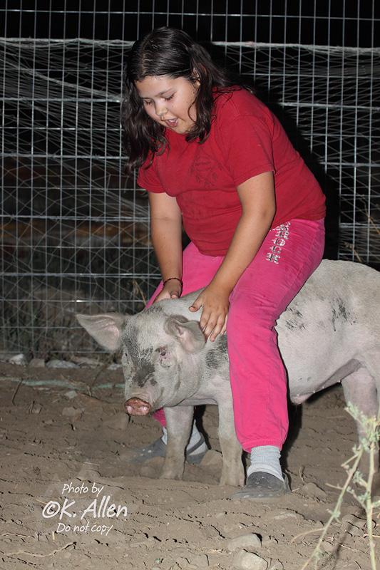 Pig Riding
