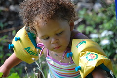 Botanist in Training