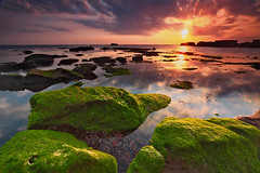..oh my.. (tropicaLiving - Jessy Eykendorp) Tags: light sea sky bali seascape beach nature water clouds indonesia coast rocks shoreline explore frontpage ohmy canggu efs1022mmf3545usm outdoorphotography canoneos50d tropicaliving hitechfilters vosplusbellesphotos mengeningbeach rawproccessedwithdigitalphotopro tiffproccessedwithadobephotoshopcs3