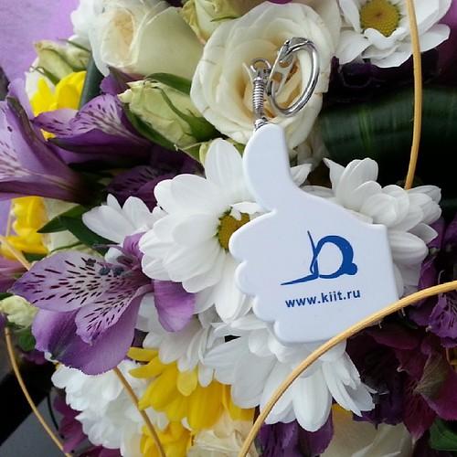 Милые, дорогие, красивые и любимые с праздником Весны! #8марта #весна #праздник #женщины #девушки #поздравление