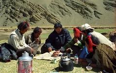 The Game is allmost over (reurinkjan) Tags: 2002 yak nikon tibet everest dri rachu herdsman tingri jomolangma lammala janreurink phyugsrdzi norrdzi བོད། བོད་ལྗོངས།