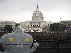 Traveling Babo views the seating areas in advance of President Barack Obama's Inauguration