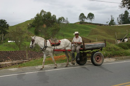 Horse cart just north of Don Matías, northern Colombia.