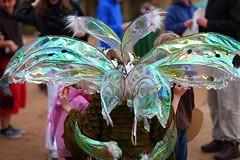 Twig at the Arizona Renaissance Festival (gbrummett) Tags: arizona festival canon lens wings with mark taken 85mm using fairy ii twig fairey l 5d oaklyn renaissance f12 flewinia thistlebottom