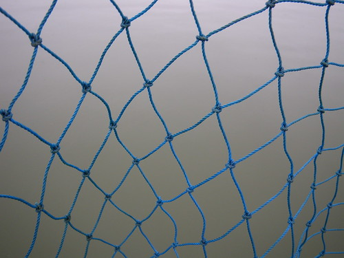 net and water