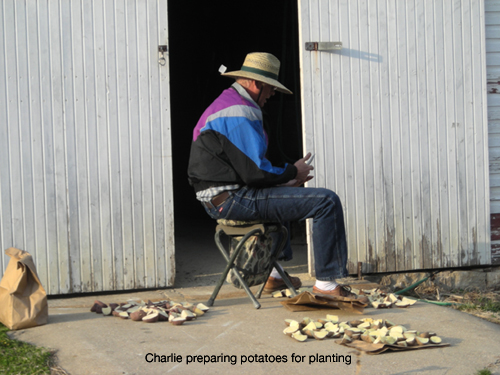 Charlie preparing potatoes