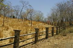 (Kathy~) Tags: fence mother hero winner cw thumbsup fc bigmomma pfosilver herowinner