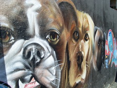 grafiti 2
