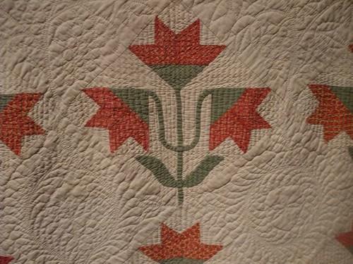 Northern or Carolina Lily - circa 1850s-60s