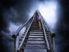 Jacob's Ladder (Leah Johnston) Tags: portrait sky woman selfportrait girl birds female clouds self heaven leah fineart surreal stairway johnston stairwaytoheaven purpledress jacobsladder selfportraitartist leahjohnson jacobladder leahjohnston leahjohnstonphotography leahjohnsonphotography leahjohnstonphotos