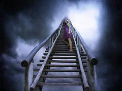 Jacob's Ladder (Leah Johnston) Tags: portrait sky woman selfportrait girl birds female clouds self heaven leah fineart surreal stairway johnston stairwaytoheaven purpledress jacobsladder selfportraitartist leahjohnson jacobladder leahjohnston leahjohnstonphotography leahjohnsonphotography leahjohnstonphotos