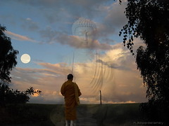 Buddha in my Heart (h.koppdelaney) Tags: life art digital photoshop energy peace heart symbol buddha peaceful compassion monk buddhism philosophy mind awareness spiritual metaphor dharma symbolism psychology archetype theravada amithaba hinayana graphicmaster