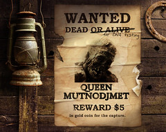 Wanted for DNA Testing: Queen Mutnodjmet