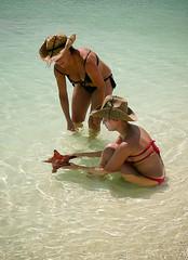 los roques venezuela (J. Quintero) Tags: mar agua playa chicas estrella paraiso losroques caribe cristalina estrellademar quintero vikini venezuelaamigos