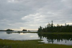 October morning, Terry's shore (Jean Knowles) Tags: trees clouds forest reflections woods rocks novascotia cove shoreline calm explore shore arr fir inlet serene softwood geotag spruce tranquil saltmarsh allrightsreserved shelburnecounty atwoodsbrook nottobeusedwithoutmypermission ©2009jeanknowles terrysshore