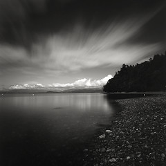 Interrogative (Kent Mercurio) Tags: blackandwhite bw 120 6x6 film monochrome mediumformat square washington pugetsound camanoisland autaut kentmercuriocom kentmercurio