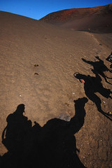 Camel shadows, Timanfaya (blinkingidiot) Tags: park shadows lanzarote dromedary camel national timanfaya 5photosaday