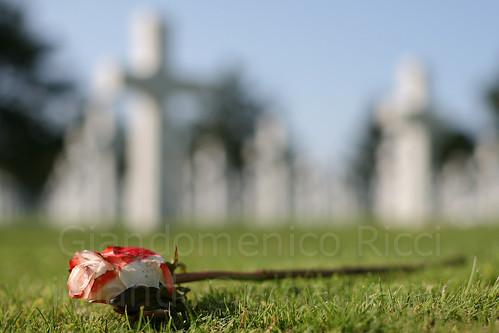 American cemetery, Normandy (by: Giandomenico Ricci, creative commons license)