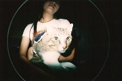 The Lomo Cat