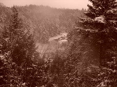 S5002930 (Force Majeure Studios) Tags: park county sky mountain black mountains west art nature water river photography virginia state acid fine canyon falls lodge valley waters gorge davis tucker blackwater allegheny canaan the darkened in tannic jameswbailey