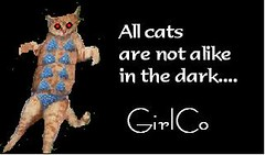 Cirlco Cat