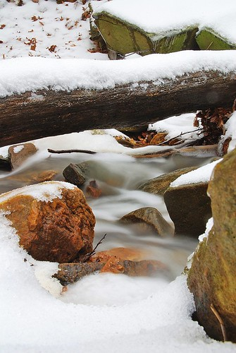 snow, ice, water, rocks, log.