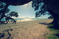 Takapuna and rangitoto (timmelm) Tags: sky beach sand g crossprocess picnik pohutukawa rangitoto naturalframe takapunabeach pfogold pfosilver